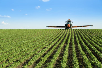 Tractor spraying soybean crop field