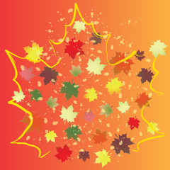 Colorful background with maple leaves.