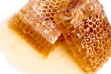 wax honeycombs with honey isolated on white background