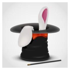 rabbit in hat vector