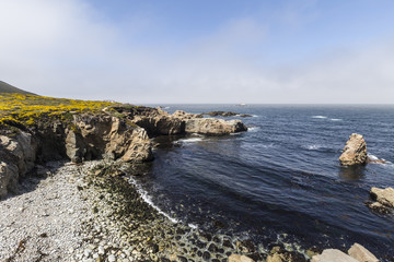 Clearing Fog on the California Coast