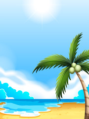 A beach with a coconut tree