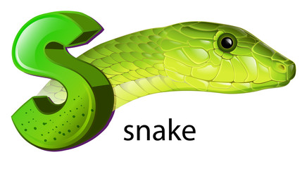 A snake and a letter S