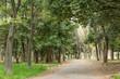 Park scenic