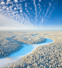 Top view of the snow-covered lowland of the forest