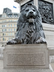 Uno dei leoni alla base della colonna Nelson a Trafalgar Square