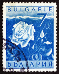 Postage stamp Bulgaria 1938 Rose, Flower