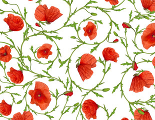 poppy flower ornamental background