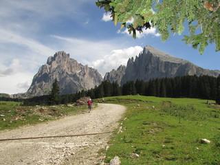 Trekking sull'Alpe di Siusi