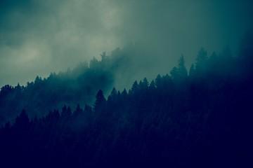 Las mglisty tło