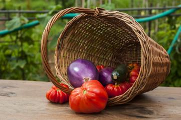 Cesto con prodotti dell'orto