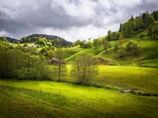 Black Forest hills
