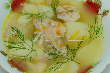 Plate of chicken soup