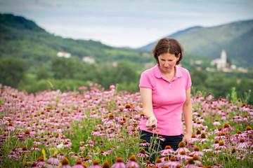 Woman in coneflower field