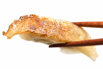 焼き餃子 jaozi dumpling 白背景