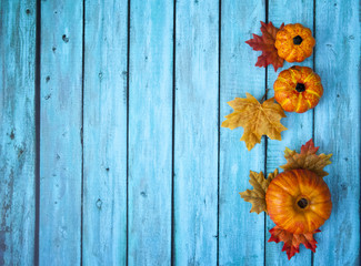 Autumn Thanksgiving Pumpkin Background