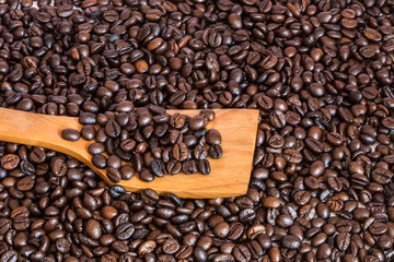 coffee beans on wooden spatula