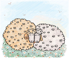 Two sheep. Vector illustation