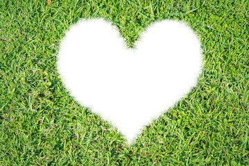 Green grass ecological heart icon