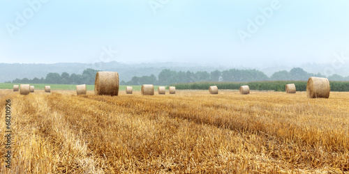 canvas print picture Hay Bales on a foggy morning