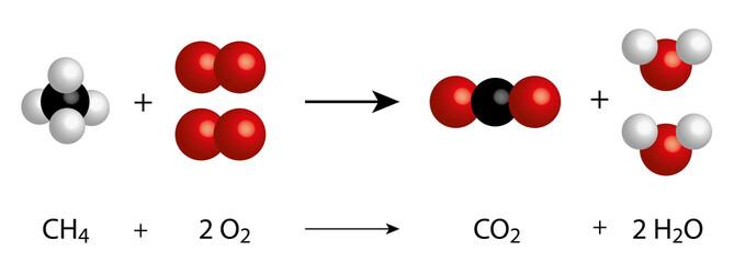 methane oxidation