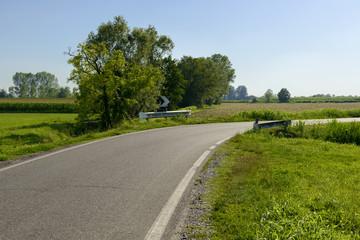 narrow bend in country road of Adda park  near Abbadia Cerreto