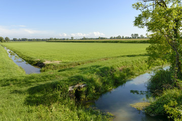 ditches and fields of Adda park near Abbadia Cerreto