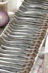 Row of  Fresh European anchovies