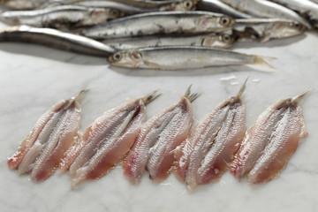 Fresh European anchovies