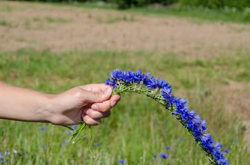 woman hands make cornflower crown wreath