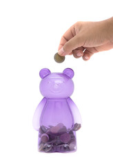 purple piggy bear bank