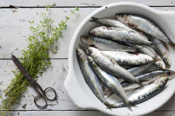 sardines on dish with thyme sprigs on rustic background