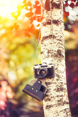 vintage camera hanging on a tree in park