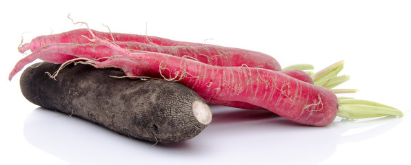 Composition with red and black fresh radish