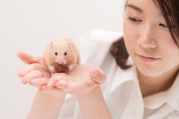 手のひらで胡桃を食べるハムスター