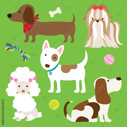 Fototapeta Dogs with Toys