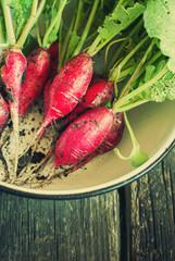 Organic Radish on wooden background