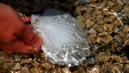 Woman washing small shell in the water.