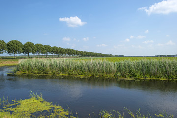 Canal through a rural landscape in summer