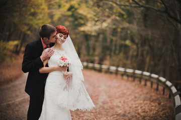 Just married couple posing in an autumn park
