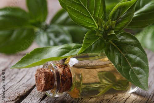 oil with basil close-up in a bottle on a wooden table.