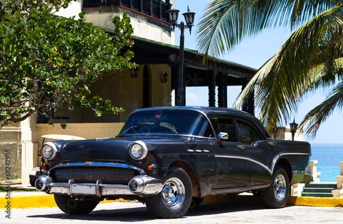 Kuba amerikanischer Oldtimer unter Palmen - 68242908