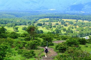 夏の登山道を歩く女性