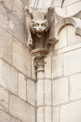Gargoyle statue, Notre Dame de Paris