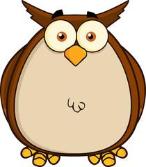 Owl Cartoon Mascot Character