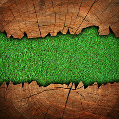 grass wood with cracked background