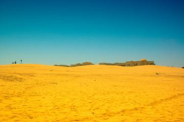 Desert of North Africa