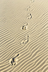 background of sand ripples at the beach with prints of feet