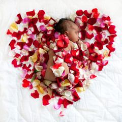 Black newborn baby sleeping in rose