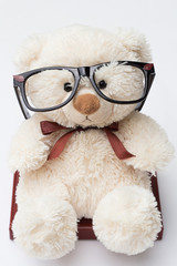 Teddy Bear with Glasses Sitting on a Book